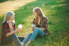Friends have fun in the park and drink smoothies at a picnic. stock photography