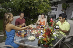 Free Friends Having A Barbecue Party Stock Photography - 32579042