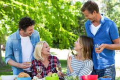 Friends Having A Picnic With Wine Royalty Free Stock Photo