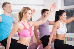Friends having aerobics workout Royalty Free Stock Photo