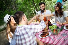 Group of friends having a barbecue party in nature royalty free stock images