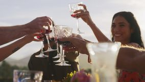 Friends having a celebratory toast. Group of young friends having a celebratory toast with wine at dinner out in the yard. Group of men and women celebrating stock video