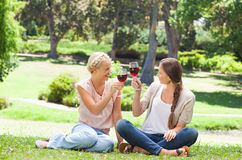 Friends having a glass of red wine in the park Stock Photo