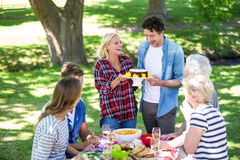 Friends having a picnic with cake Royalty Free Stock Photos