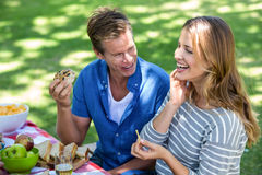 Friends having a picnic Royalty Free Stock Photography