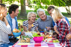 Friends having a picnic Stock Images