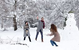 Friends having snowball fight royalty free stock photography