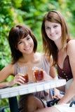 Friends having tea Stock Photos