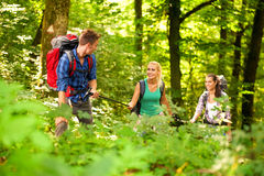 Friends hiking in the mountain Stock Images