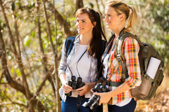 Friends hiking mountain Stock Image