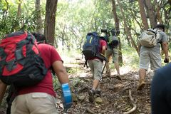 Friends hiking in outdoor summer activity. With backpack, people backpackers walking in the woods Royalty Free Stock Images