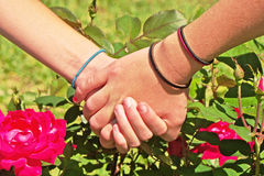 Friends holding hands Royalty Free Stock Image