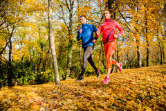Friends jogging in autumn nature Stock Images