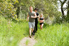 Friends jogging in the forest stock image