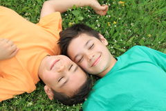 Friends on the lawn. Happy friends on the lawn Royalty Free Stock Photography