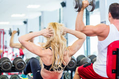 Friends lifting weights in fitness gym Stock Images