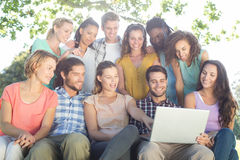 Friends looking at laptop in the park. On a sunny day Stock Photo