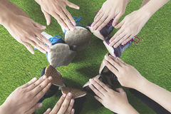 Friends make circle with hands and feet Stock Photos
