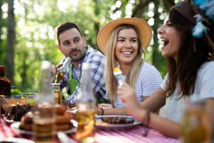 Friends making barbecue and having lunch in the nature royalty free stock image