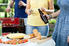 Friends making garden party Royalty Free Stock Photo
