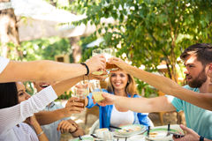Friends making toast around table Royalty Free Stock Images
