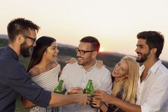Friends making a toast. Group of friends at a summertime outdoor party having fun, dancing, drinking beer and making a toast stock photos