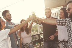 Friends making a toast royalty free stock images