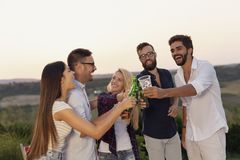 Friends making a toast at the party. Group of friends at a summertime outdoor party having fun, dancing, drinking beer and making a toast royalty free stock photography