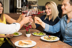 Friends making a toast with wine Royalty Free Stock Image