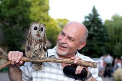 Friends, man and wise owl stock photo
