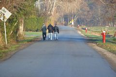 Friends on a Morning Walk Royalty Free Stock Photography