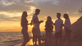 Friends near sea at sunset. stock footage