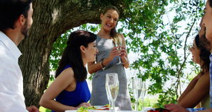Friends at outdoor lunch applauding for woman stock footage