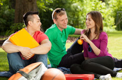 Friends in park playing hookey Royalty Free Stock Images
