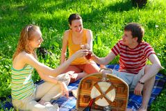 Friends on picnic Royalty Free Stock Photo