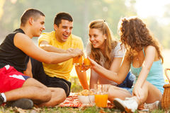 Friends on picnic Royalty Free Stock Photography