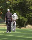 Friends Playing Golf royalty free stock photo