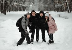 Friends playing with snow in park royalty free stock photography