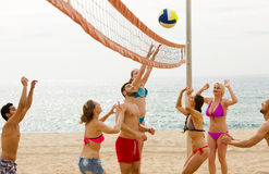 Friends playing volleyball Royalty Free Stock Image
