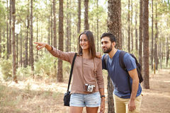 Friends pointing at something in forest Stock Photography