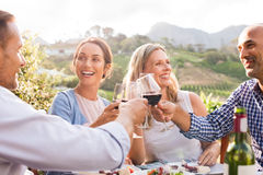 Friends raising toast. Happy friends raising their glasses in a toast outdoor in a winery farm. Smiling mature women and men enjoying a picnic together at park royalty free stock photo