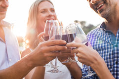 Friends raising toast with wine. Group of mature friends raising a toast with glasses of red wine outdoor during sunset. Close up hands of senior men and women stock photos