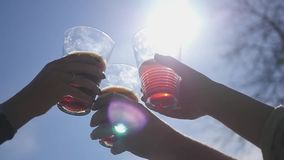 Friends raising wine glasses having a festive dinner toasting and drinking different drinks against the sky and the sun. With a lysis effect. Party outdoors stock video footage