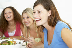 Friends Relaxing At Home Having Lunch Stock Photography