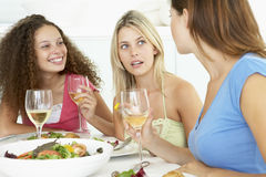 Friends Relaxing At Home Having Lunch Stock Images