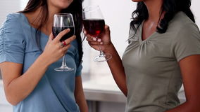 Friends relaxing with red wine while the meal is being cooked. In the kitchen stock video footage