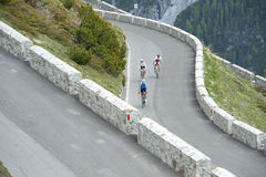 Friends with road cycles. Friends by road cycle downhill Stock Image