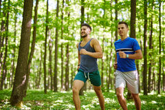 Friends running through forest Royalty Free Stock Image