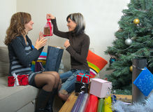 Friends Sharing Christmas Presents Royalty Free Stock Images