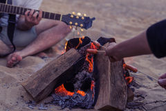 Friends sitting on stones on beach. man is playing guitar. Stock Photography